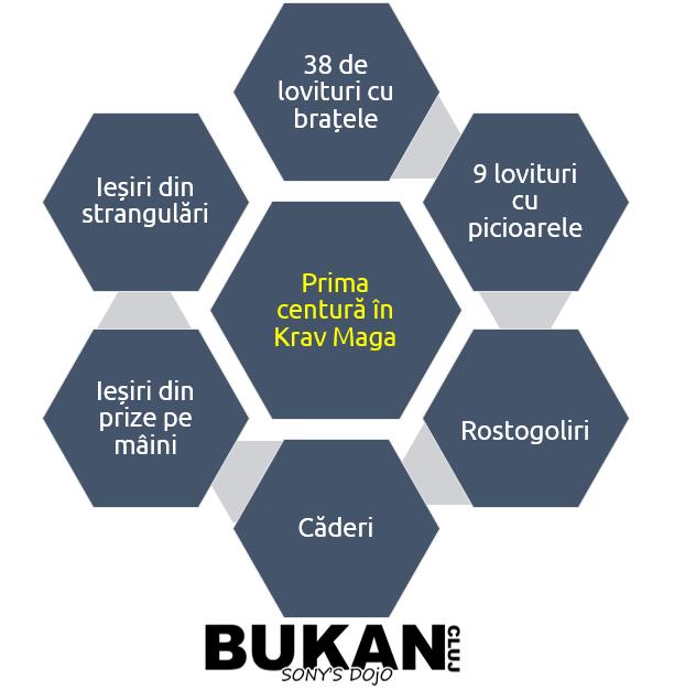 primele tehnici in Krav Maga, centura galbena, yellow belt